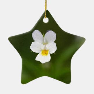 Flower of a wild field pansy ceramic star decoration