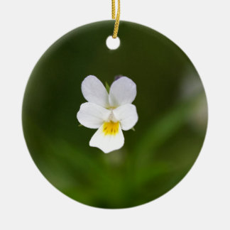 Flower of a wild field pansy christmas ornament
