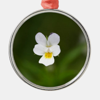 Flower of a wild field pansy Silver-Colored round decoration