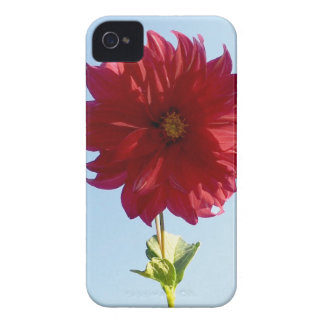 Flower on the Sky iPhone 4 Cases