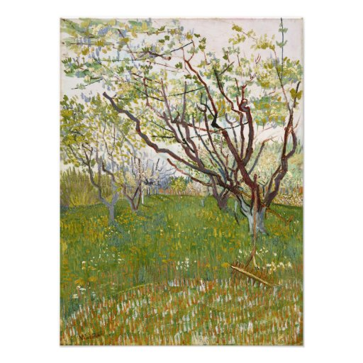 Flowering Orchard by Vincent Van Gogh Photograph