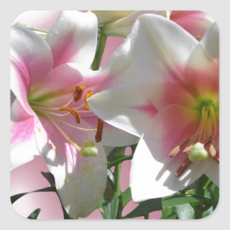 Flowers Blossoms Spring Garden Love Shower Party Square Sticker