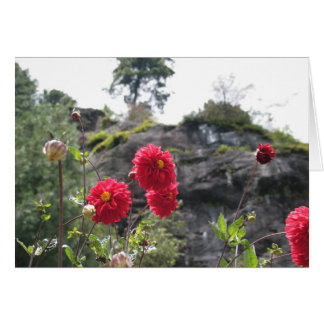 Flowers from Nepal Greeting Card