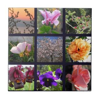 Flowers in Israel Tile
