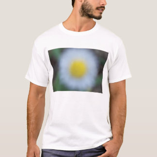 Flowers in the Park T-Shirt