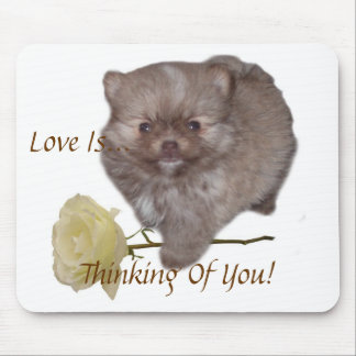 Flowers Zeus Pomeranian  Love Is Thinking Of You!  Mouse Pad