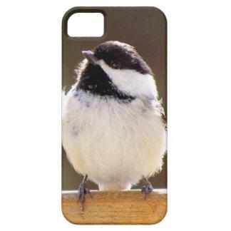 Fluffy chickadee iPhone 5 case
