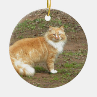 Fluffy Orange and White Kitty Round Ceramic Decoration