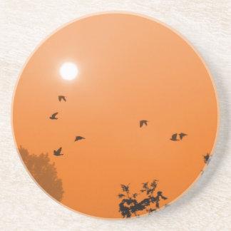 Fly at dawn Coaster
