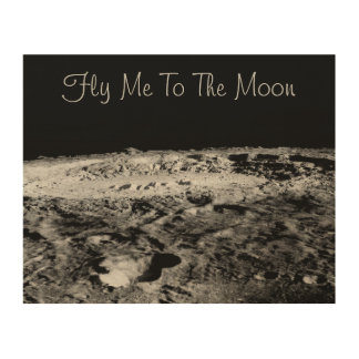 Fly Me To The Moon Wood Canvas
