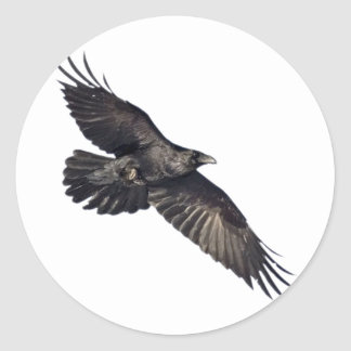 Flying Crow Classic Round Sticker