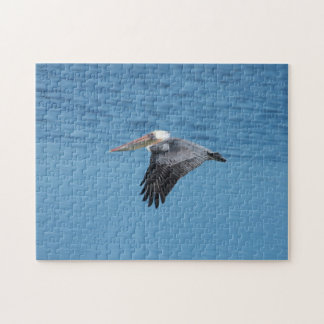 Flying Pelican 7 Puzzle