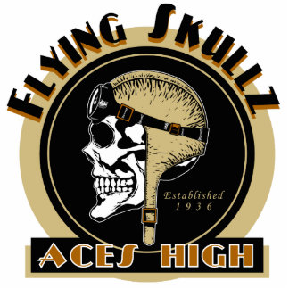 Flying Skullz Aces High Airborne Paratrooper Skull Standing Photo Sculpture