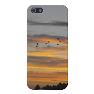 Flying South, birds, iPhone case iPhone 5 Cases