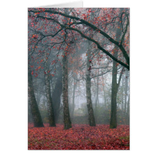 Fog in Autumn Forest with Red Leaves Card