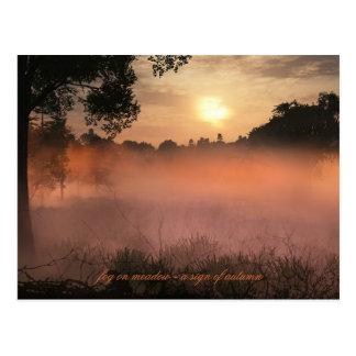 fog on meadow postcard