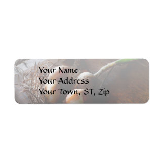 Food - Freshly pulled onions Return Address Label