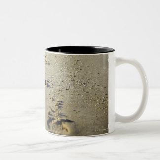 Footprint in coast. Two-Tone coffee mug