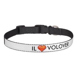 """For the """"Buddy"""" in your life! Pet Collar"""