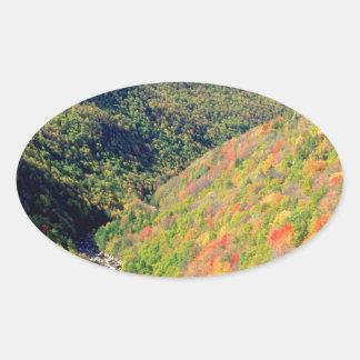Forest Blackwater River Pendleton Virginia Oval Sticker