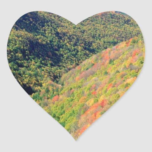 Forest Blackwater River Pendleton Virginia Heart Stickers