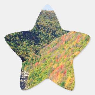Forest Blackwater River Pendleton Virginia Sticker