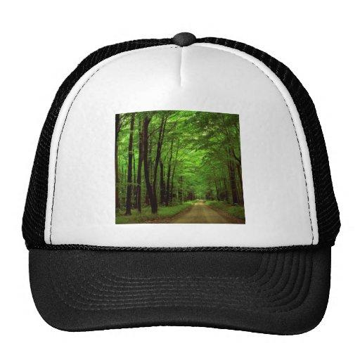 Forest National Pennsylvania Trucker Hats