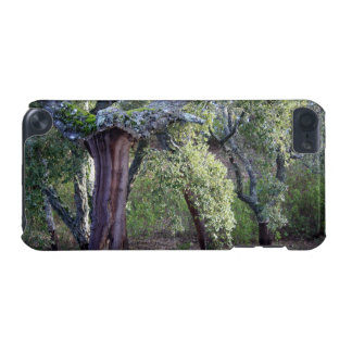 Forest of cork oaks or cork trees iPod touch (5th generation) cover
