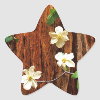 Forest Pacific Dogwood Redwood Star Sticker