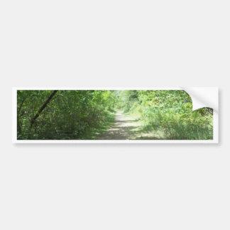 Forest Path Bumper Sticker