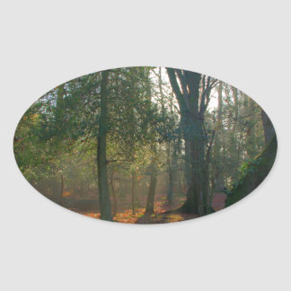 Forest Peace Oval Sticker