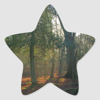 Forest Peace Star Sticker
