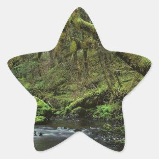 Forest Peaceful Alaska Sticker