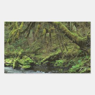 Forest Peaceful Alaska Rectangle Sticker