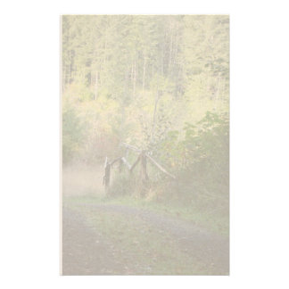 Forest Trees Redwoods Hiking Trail Scenic Oregon Stationery