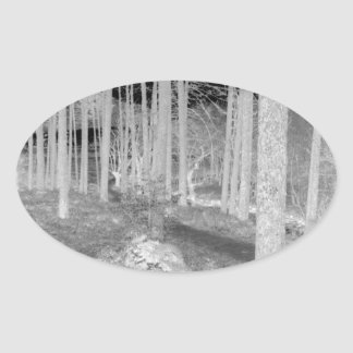Forests of Ardentiny Oval Stickers