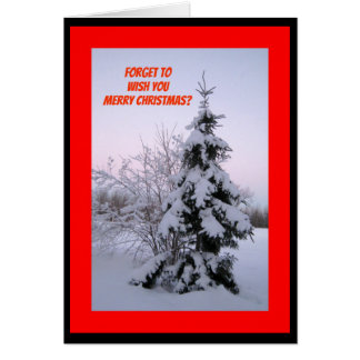 Forget To Wish You Merry Christmas? Snow Way! Card