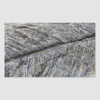 Fossil Plant Rectangular Sticker