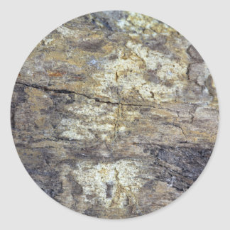 Fossil Wood Classic Round Sticker