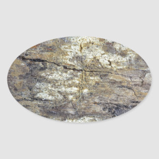 Fossil Wood Oval Sticker