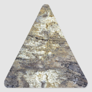 Fossil Wood Triangle Sticker