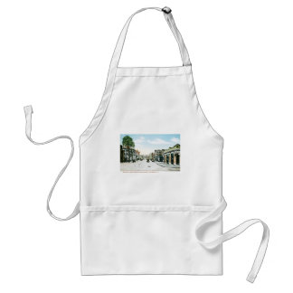 Fountain Street, Providence, Rhode Island Adult Apron
