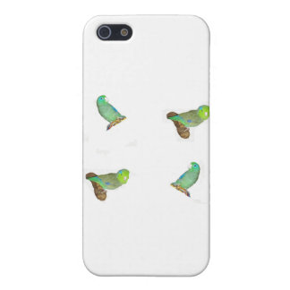 Four parrotlets I iPhone 5/5S Covers