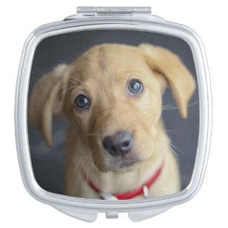 Fox Red Labrador Puppy Compact Mirror