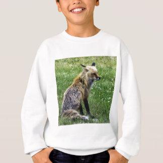 Fox Resting on Field in Idaho Springs, Colorado Sweatshirt