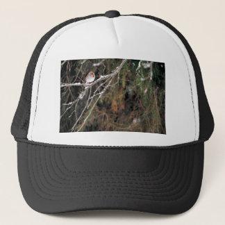 Fox sparrow trucker hat