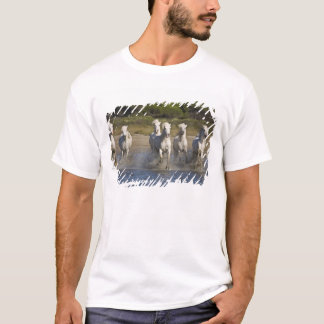 France, Camargue. Horses run through the estuary 2 T-Shirt