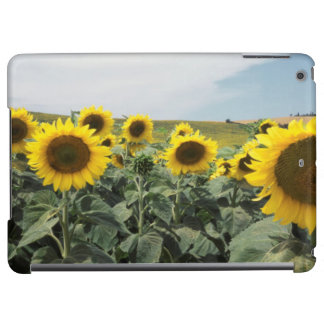 France Provence, View of sunflowers field iPad Air Case