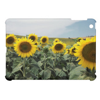 France Provence, View of sunflowers field iPad Mini Case