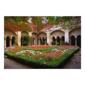 France, St. Remy de Provence, cloisters at Photo